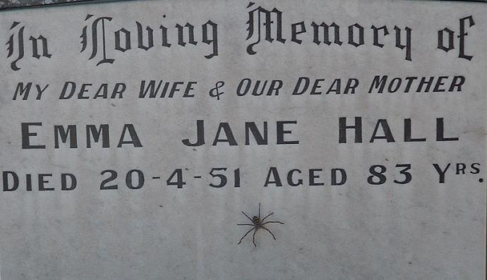 Grave of Jan Hall